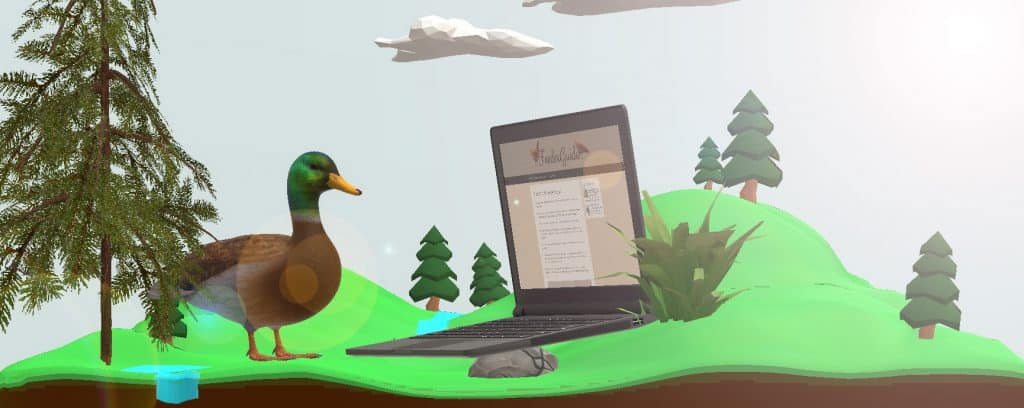 duck on a laptop